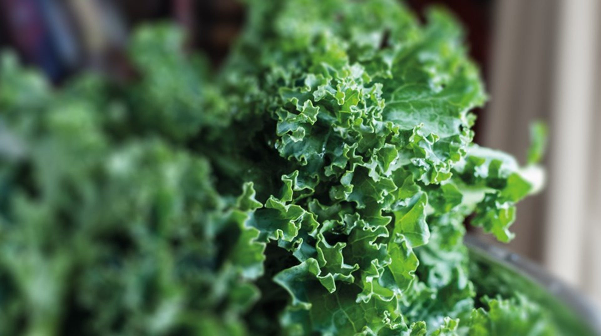Kale For Pregnancy